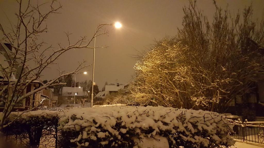 snö 20160201